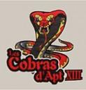 130px-Cobrasapt