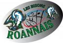 logo-bisons-roannais0