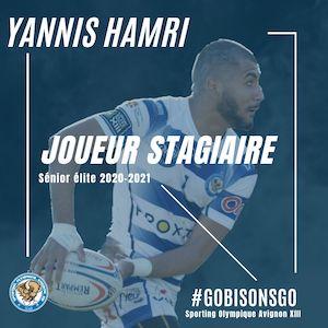 Yannis Hamri -  formation élite